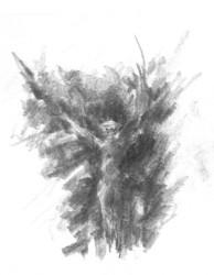 Centaur's Wings