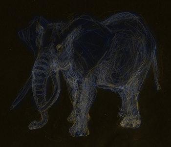 2014 Éléphant